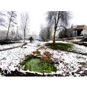 In Verantwortung für Naturschutz und Siedlungsqualität: Goetheanum ergreift juristische Schritte zum Schutz der ‹Schwinbach Aue›