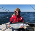 Team Nite Ize Abel Fishing siktar på vinst i årets Trolling Master Bornholm
