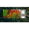 MW Group startar dotterbolag specialiserat på skoglig fjärrananlys