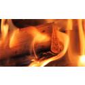 Online-Vortrag: Feinstaubvermeidung bei kleinen Holzöfen