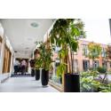 Tilsyn: God kvalitet og høj grad af tryghed på pleje- og omsorgsområdet i Ballerup Kommune