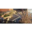 Ny park med industriella inslag i Norrköping