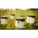 Zum Weltbienentag 2021: Bienen fühlen sich beim Paten burgbad wohl