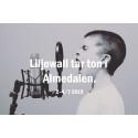 Liljewall tar ton i Almedalen