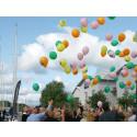 Lansering av varumärket Uddevalla - hjärtat i Bohuslän på Bohusracet