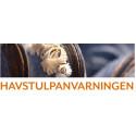 Havstulpanvarning utlyst för Kalmar, Blekinge och Skåne län