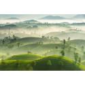 Noch einen Monat Zeit: Jetzt für die Sony World Photography Awards bewerben