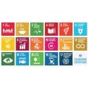 Duurzame ontwikkelingsdoelstellingen (SDG's) slaan aan in Vlaamse steden en gemeenten.