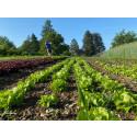 «Eine Landwirtschaft ohne Pestizide ist möglich»: Beitrag der biodynamischen Landwirtschaft zur Gesundheit der Erde