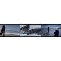John Akomfrah / Vertigo Sea