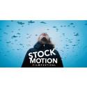 Kortfilmsfestivalen STOCKmotion blir digital – här är årets program