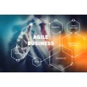 Experis AVAN: Bedriftskultur som gir raskere omstilling og økt innovasjon