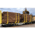 Holmen agreement leads to Sweden's largest timber wagon