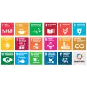 CoSafe lanserar hållbarhetsinitiativ för ett tryggare och säkrare samhälle
