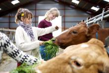 Arlas landmænd inviterer til åbent hus