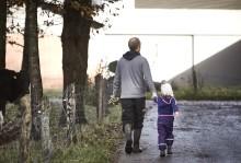 Markt-Report: Zusammenarbeit und konkrete Maßnahmen für eine nachhaltige Zukunft der europäischen Milchwirtschaft