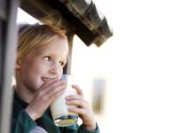 Arla nollaa maidon hiilijalanjäljen askel kerrallaan – kaikilla Arla Suomen maitotiloilla kartoitetaan ilmastovaikutukset ensi vuonna