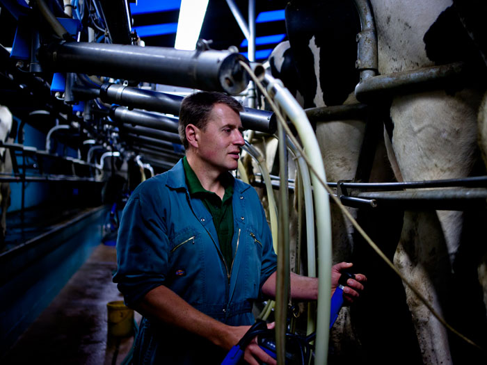 Arla poised for more owners in the UK
