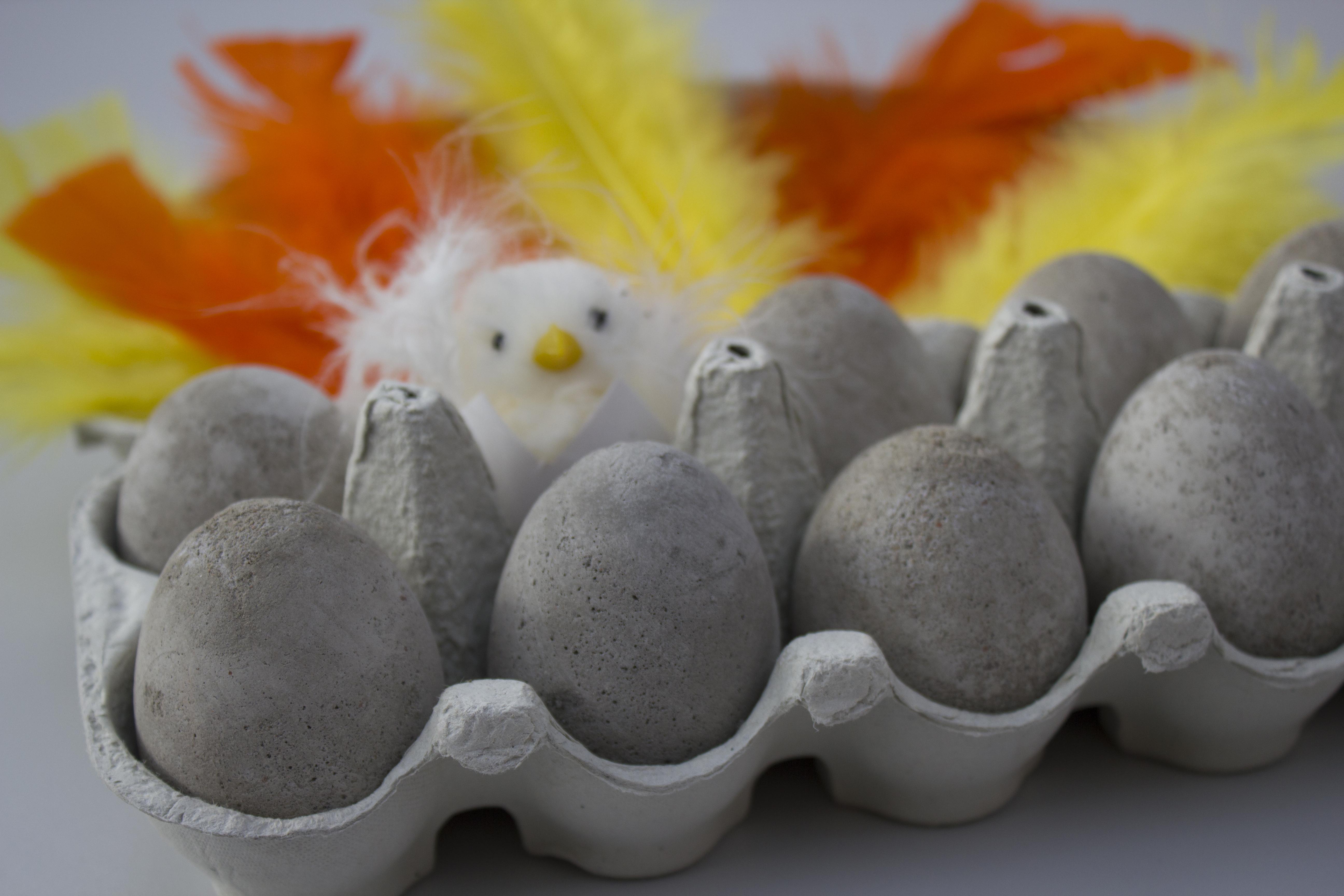 Egg i betong 1