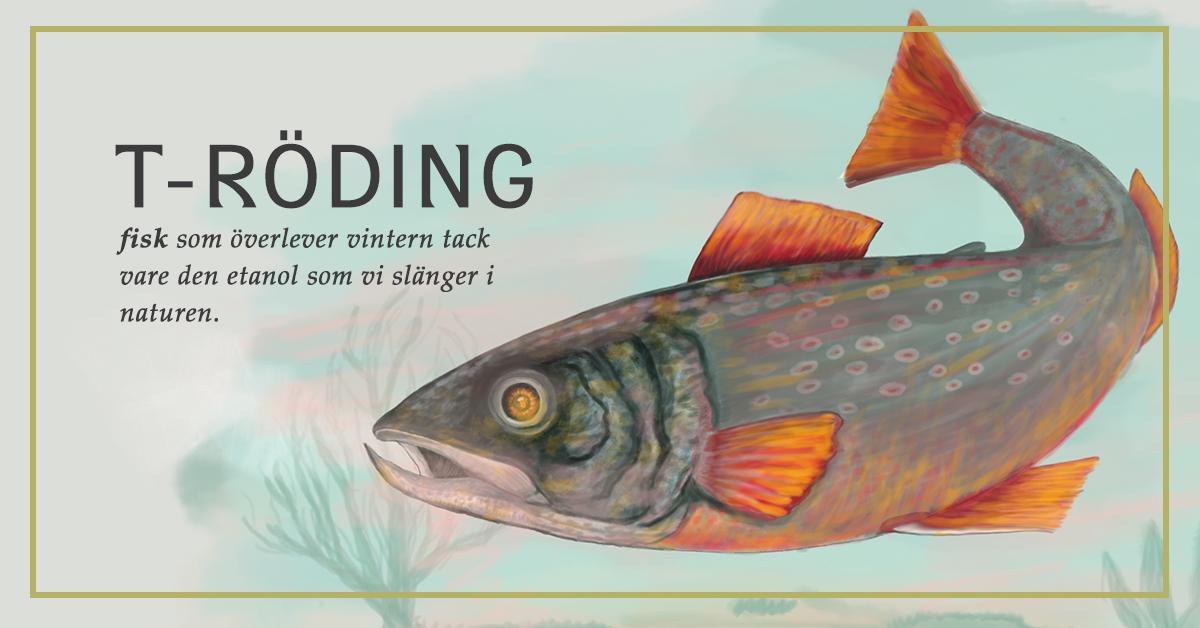 T-ro¦êding
